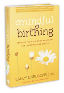 MindfulBirthing_book